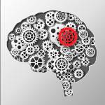 Orientation 3 – Développement des compétences
