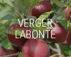 Le Verger Labonté