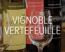 Vignoble Vertefeuille