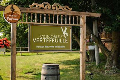 Vignoble-Vertefeuille_pancarte